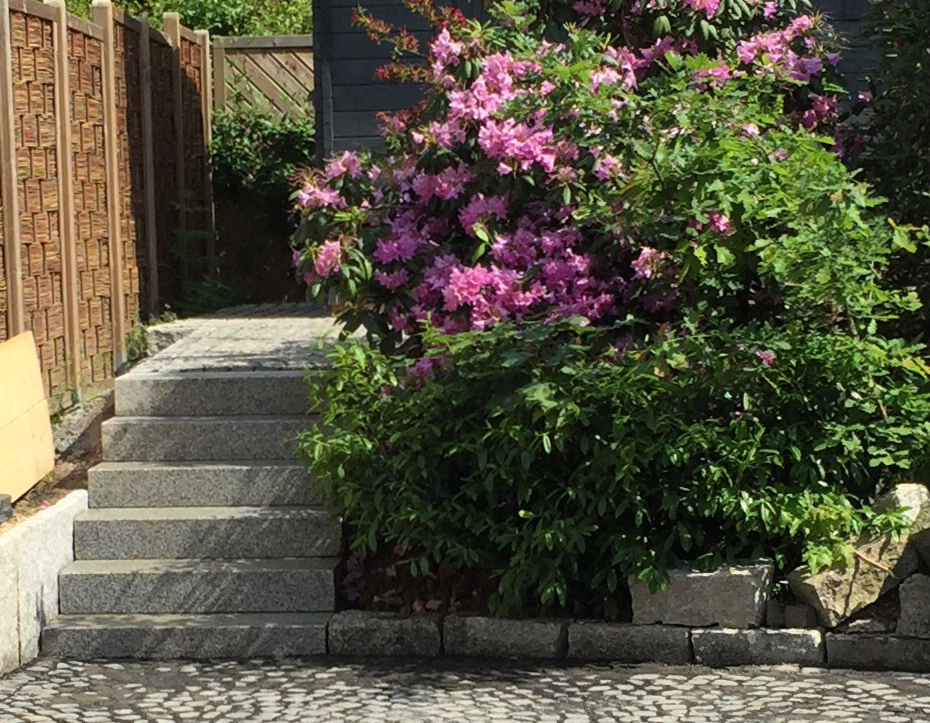 Gartenbau kassel agon gartenbau gmbh - Gartenbau kassel ...